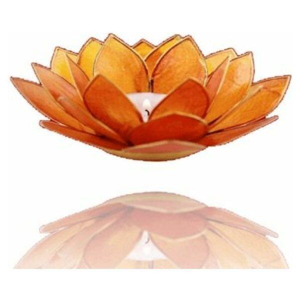 Lotus oranje goud