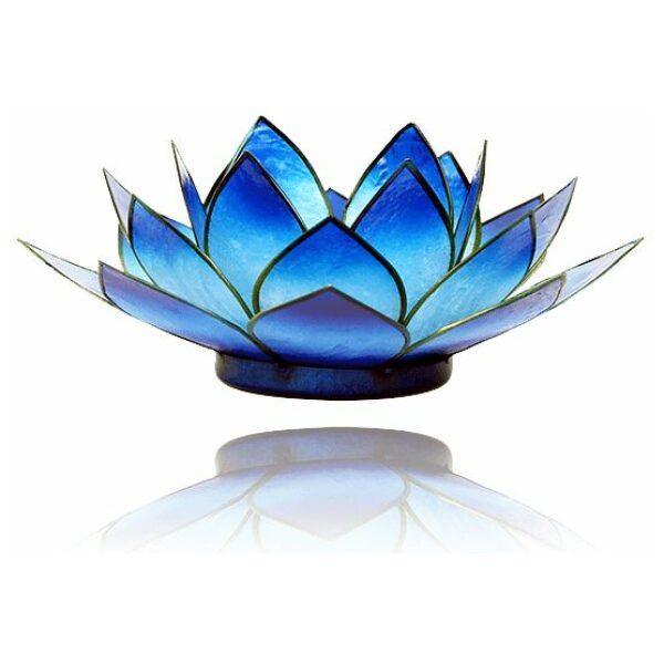 Lotus 2 kleurig blauw