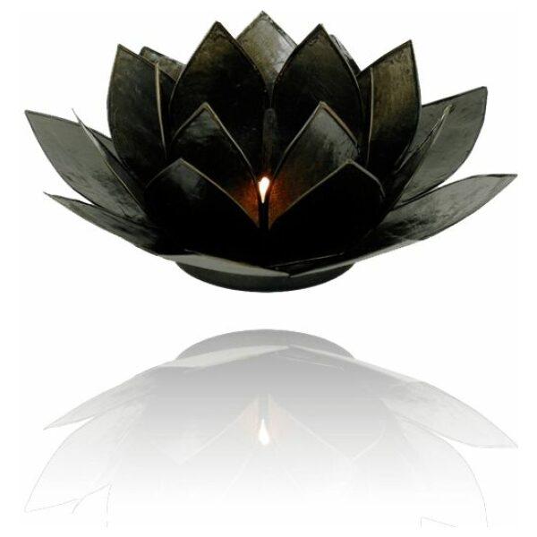 Lotus zwart