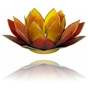 Lotus 3 kleurig geel bruin