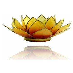 Lotus 2 kleurig oranje